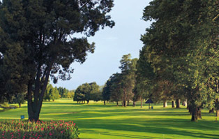 golf-gowrie-farm-boschhoek