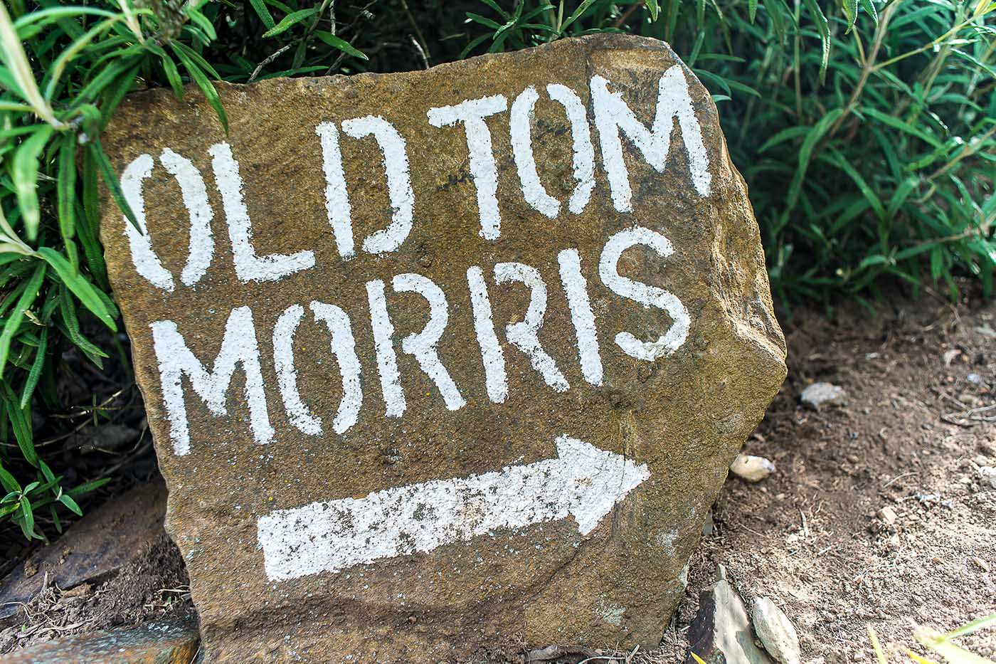 old-tom-morris-cottage-gallery-accommodation-gowrie-farm-property-housing-development-Nottingham-Road-golf-estate