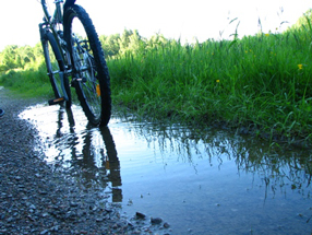 cycling-gowries-top-200-things-to-do-gowrie-farm-midlands